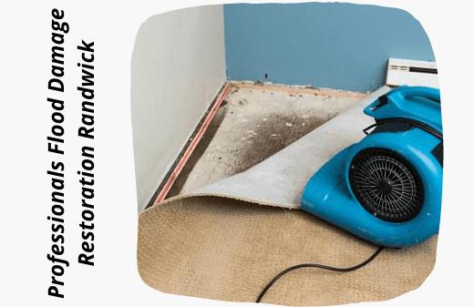 Professionals Flood Water Damage Restoration Randwick